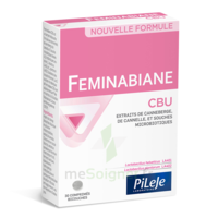 Pileje Feminabiane Cbu 30 Comprimés Bicouches à Entrelacs
