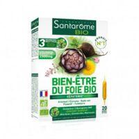 Santarome Bio Bien-être Du Foie Solution Buvable 20 Ampoules/10ml à Entrelacs