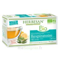 Herbesan Thym Bio Tisane Respiratoire 20 Sachets à Entrelacs