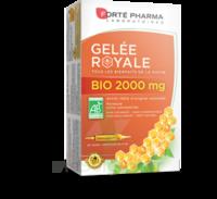 Forte Pharma Gelée Royale Bio 2000 Mg Solution Buvable 20 Ampoules/15ml à Entrelacs