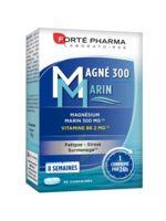Magné 300 Marin (2 Mois) à Entrelacs