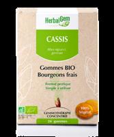Herbalgem Gomme Cassis Bio B/24 à Entrelacs