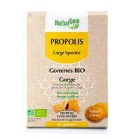 Herbalgem Propolis Large Spectre Gomme Bio B/24 à Entrelacs