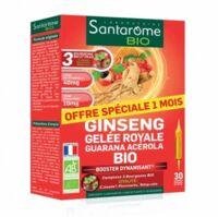 Santarome Bio Ginseng Gelée Royale Guarana Acérola Solution Buvable 30 Ampoules/10ml à Entrelacs