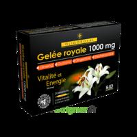 Sid Nutrition Oligoroyal Gelée Royale 1000 Mg 5g _ 20 Ampoules De 10ml à Entrelacs
